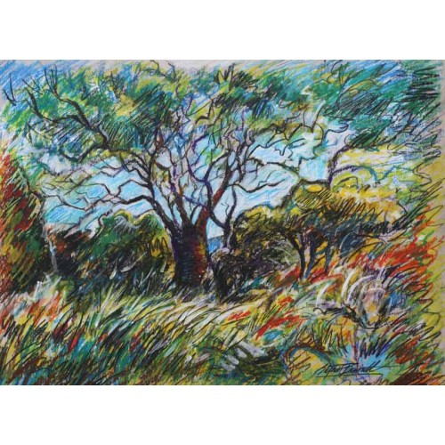 Trees at Carn